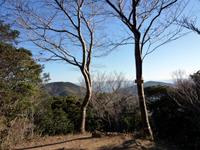 Photo3634