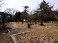 Photo3646