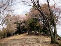 Photo3667