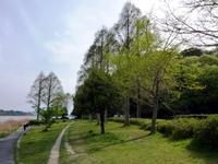 Photo3701