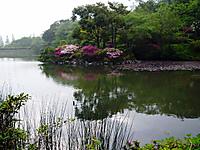 Photo3870