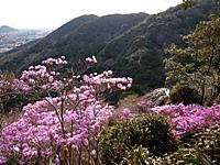 Photo3883