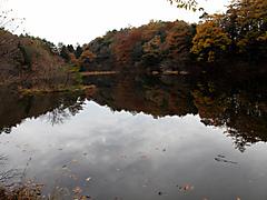 Photo3897