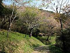 Photo4062