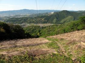 Photo4235