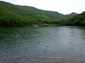 Photo4636