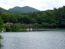 Photo4642