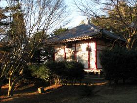 Photo5246