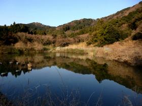 Photo5633