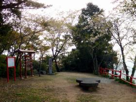 Photo5950