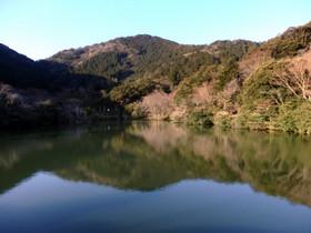 Photo6307