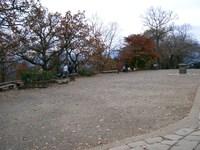 Photo1116