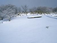Photo1177