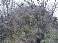 photo1736