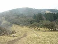 photo1751